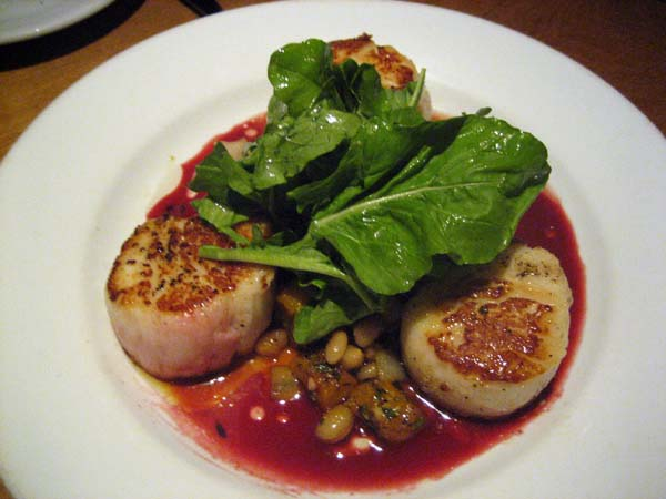 Scallops in beet coulis